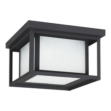 Sea Gull 79039-12 - Two Light Outdoor Ceiling Flush Mount